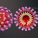 Majority of ITS businesses report negative coronavirus effects, but business continues for most